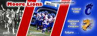 fb banner lions card 2014